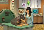 Obrázek ze hry The Sims 4 - Bundle Základní hra + Psi a Kočky